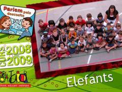 02 elefants_2009_imagelarge