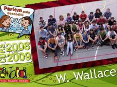 13 wallace_2009_imagelarge