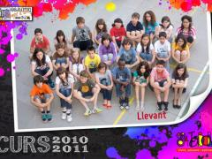 llevant_2011_imagelarge